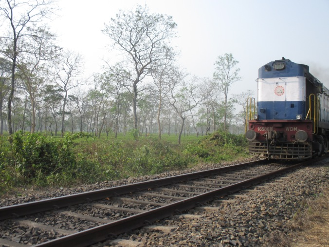 A train passing through a Tea Estate in South bank region, Assam, India